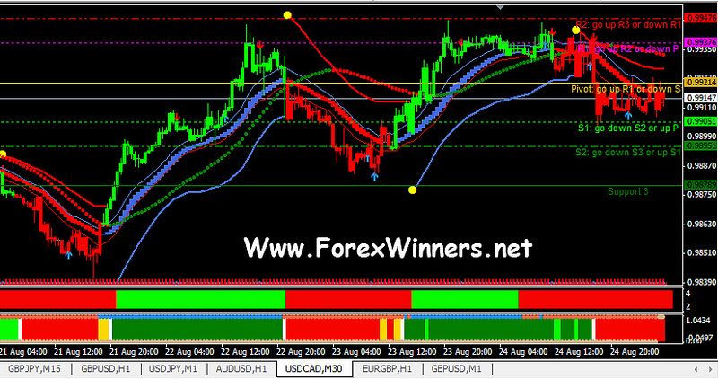 Robofx Forex Winners Free Download