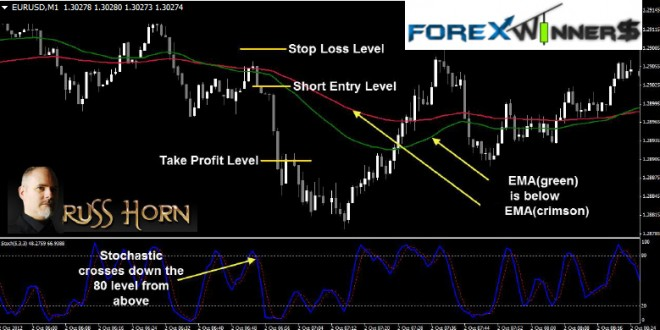 1 minute daily forex review