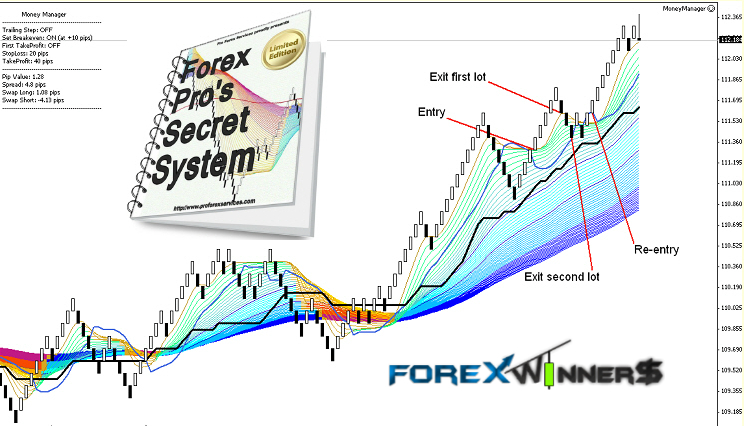 How pros trade forex