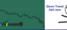 funny forex pic