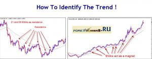 How To Identify The Trend