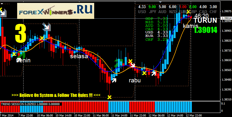 The best forex trading system