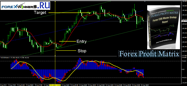 Forex profit matrix review