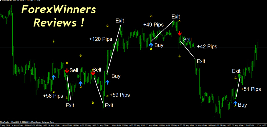 forex-trend-navigator , forex review