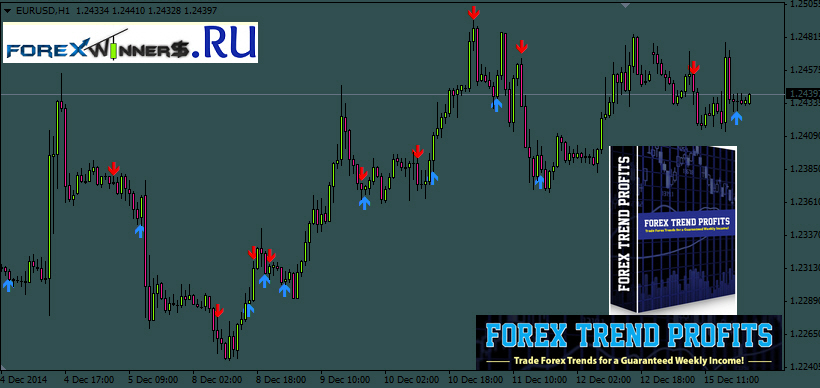 Forex box profit strategy free download