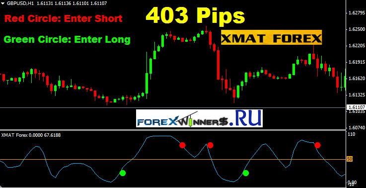 Csm forex download