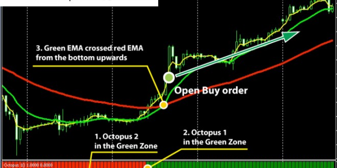 Forex Trading Strategy That Works