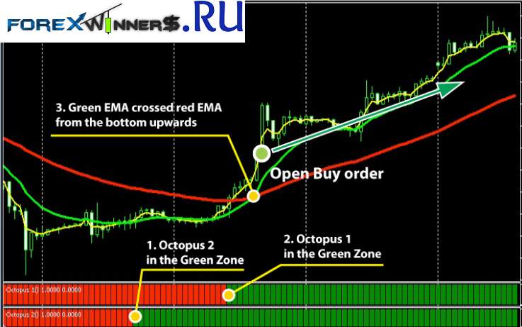 Kraken forex binary options system