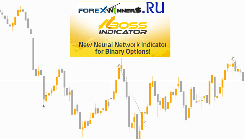 Binary options network