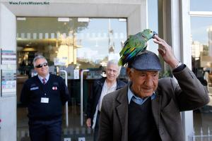 With pictures : Cyprus banks reopen