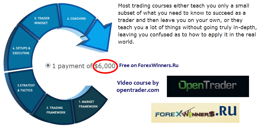 Forex professional course