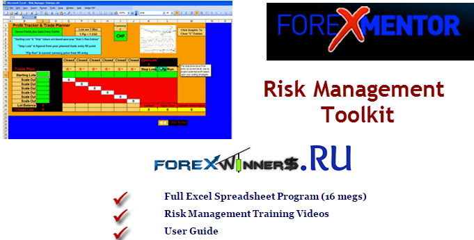 Forex risk reward calculator