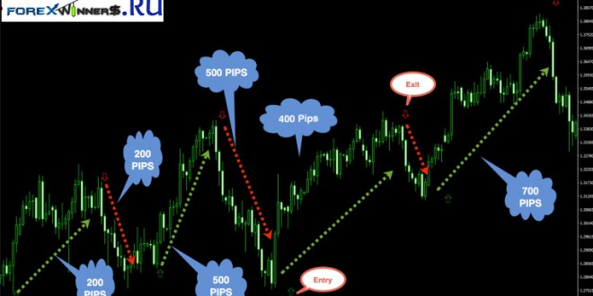 Cluster algorithm forex download