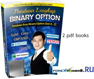 Panduan Lengka-Teknik Profit Binary Option