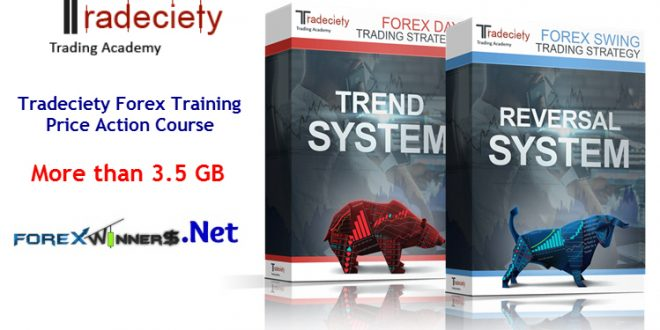 Forex course price